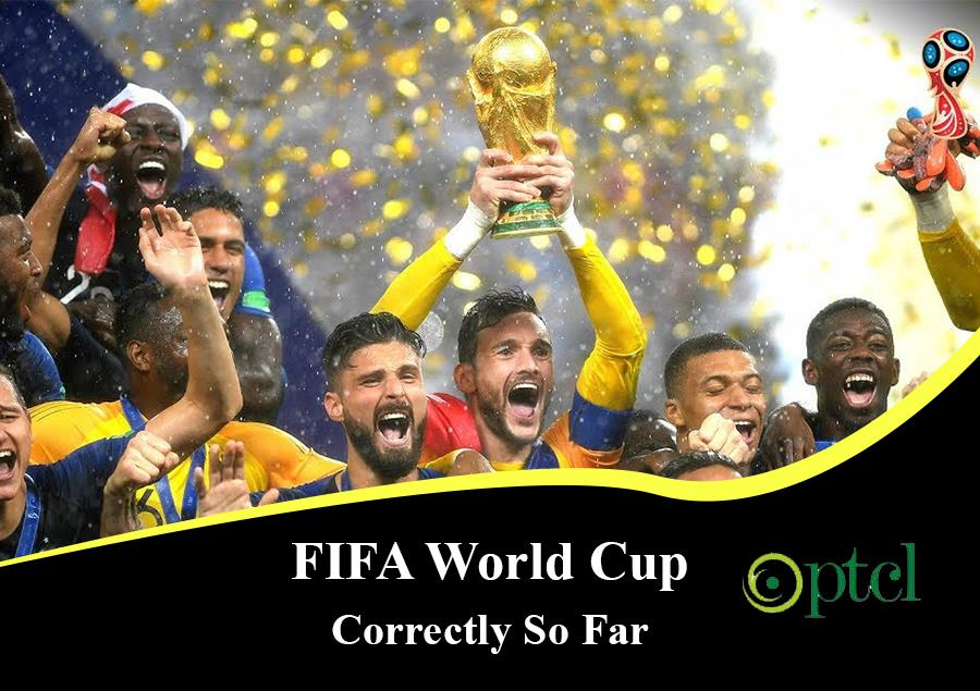 Parrot Pir From Pakistan Has Predicted the Results of FIFA World Cup Correctly So Far – Movingtrend