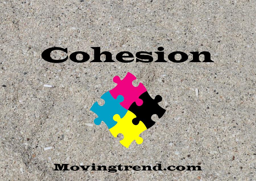 Cohesion – Let's Know what is it? – Movingtrend